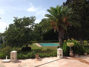 Les Palmiers Centre de Vacances
