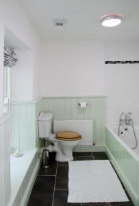 A bathroom at Bronfelin & Troed-y-Rhiw Holiday Cottage