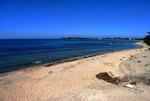 La Union Blue Marlin Resort