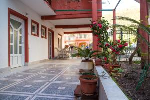 Guest House Rosa