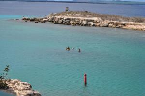 Reefs Edge Bonaire