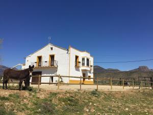 Casa Justo