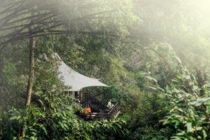 Four Seasons Tented Camp Golden Triangle