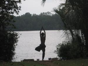 Mangrove Villa - Bentota River