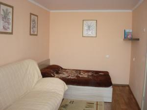 A room at Apartment Frunze