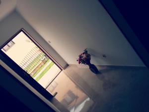 Apartment Pejic