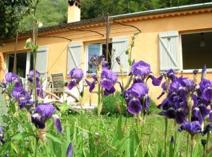 Les Mas d'Azur