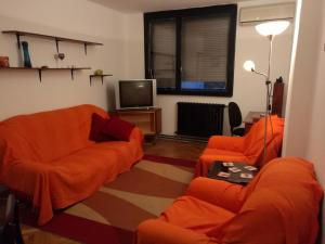 Belgrade Dorcol cosy apartment