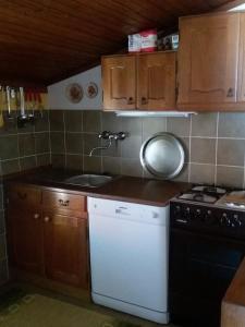 A kitchen or kitchenette at Apartman Cvijanović