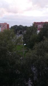 Vihuri Apartment
