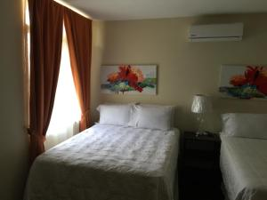 Hotel Casa del Angel San Pedro Sula