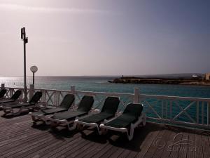 Diving Port Bonaire