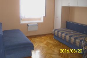 Apartment Lion