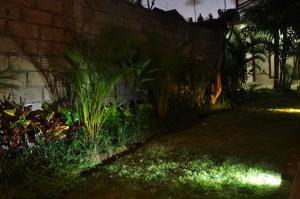 A garden outside Villa Ayuni