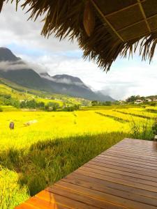 Golden Rice Garden
