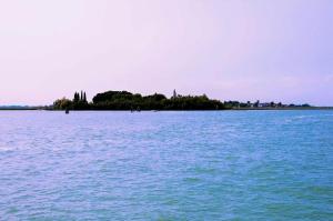 Island Lagoon - Island Lagoon