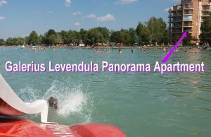 Galerius Levendula Panorama