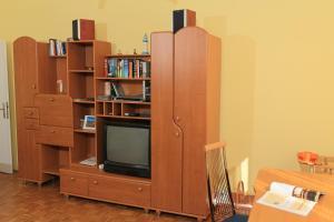 Televízia a/alebo spoločenská miestnosť v ubytovaní Appartement Almian