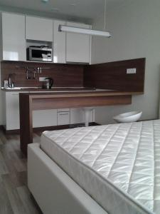 Apartment Crocus Expo