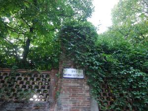 Bertoloni Botanic House
