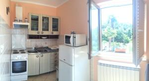 Kuhinja oz. manjša kuhinja v nastanitvi Apartments Lili