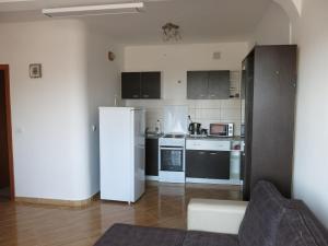 A kitchen or kitchenette at Apartments Victoriya
