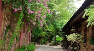 Bagan Central Hotel (Dormitory Rooms)