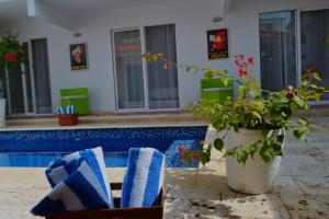 Casa Crespo Beach 65-148