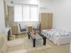 Apartment Vizija Dom
