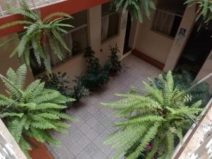 Hotel Sisa