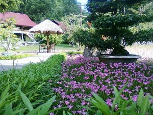 Cat Ba Eco Lodge Resort