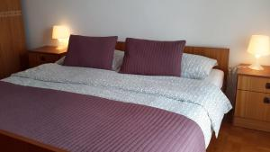Two-Bedroom Apartment in Umag I