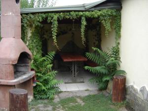 Apartment Siofok, Lake Balaton 9