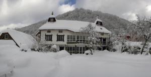 Cherepanovs' Guest House