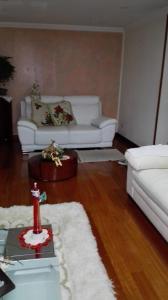 Apartamento Parque Lagartos