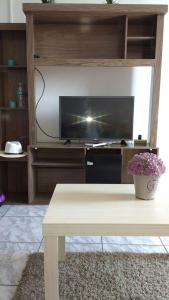 Una televisión o centro de entretenimiento en Water Park Apartment