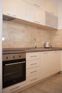 Apartment Mitrovic