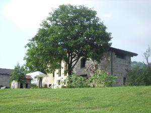A garden outside Borgo Belvedere - Bilo