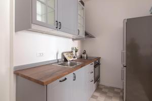 A kitchen or kitchenette at Gregorciceva House
