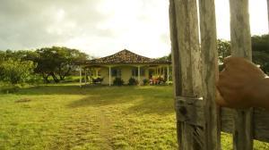 Hostel Tucupi