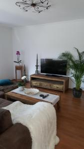 Телевизор и/или развлекательный центр в Apartment