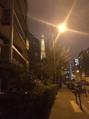 Lovely Flat Champs de Mars Eiffel