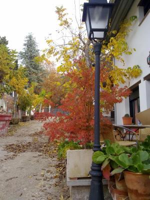 gran imagen de Miranevada, Casas de Montaña