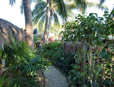 El jardin zipolite bungalows con opiniones for Bungalows el jardin retalhuleu guatemala