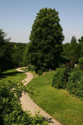 H tel panacee grand romerbad allemagne badenweiler for Piscine badenweiler