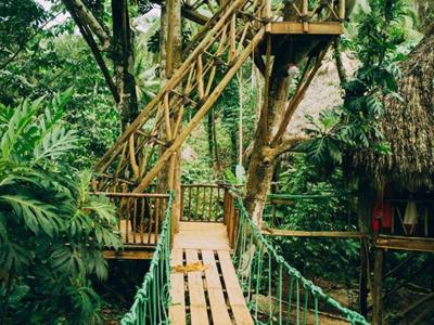 Lodge Dominican Tree House Santa B 225 Rbara De Saman 225