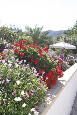 gran imagen de Alora Valley View Accommodations