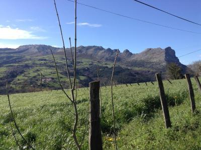 Casa Rural La Higuera fotografía