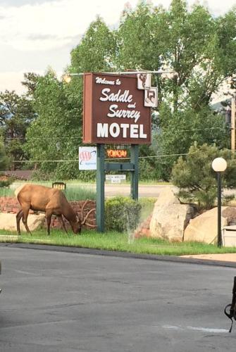 Saddle & Surrey Motel