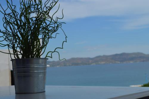 Saronic View